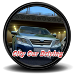 City Car Driving – Türkçe